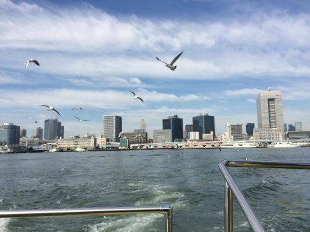 東京港ユリカモメ