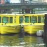 水上タクシーって何?新しい交通網のメリットとは